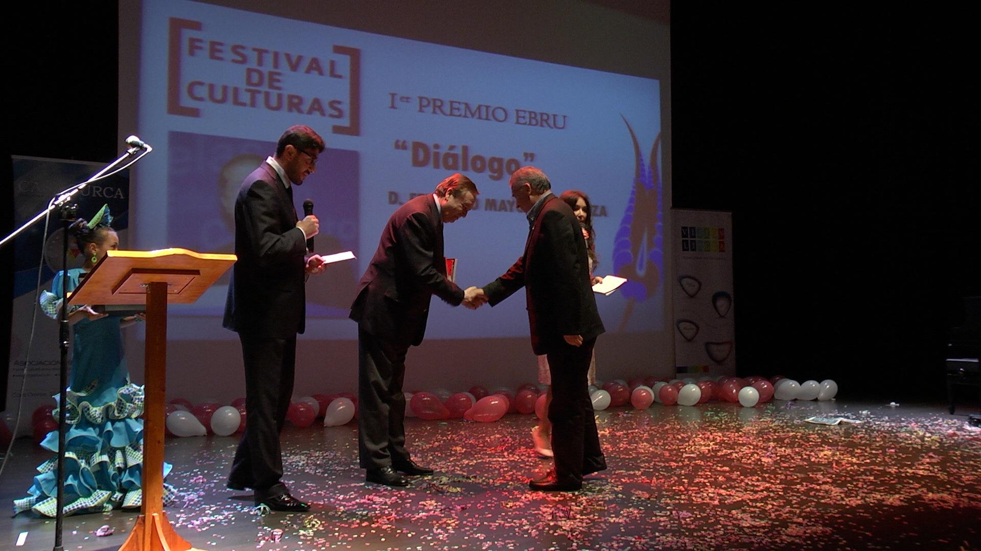 Premios Ebru 2013 (7)